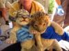 Lion cubs born at Reid zoo