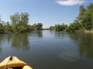 Kayaker able to navigate part of rejuvenated Colorado Delta