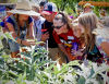 Festival helps fight childhood obesity