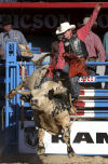 Bull rider shrugs off risk of injury