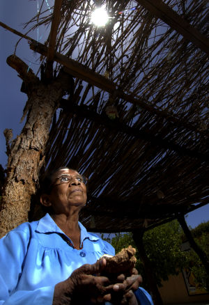Neto's Tucson: Fitting tribute for a traditional healer