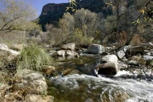 Photos: Sabino Canyon