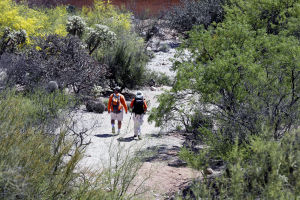 Desert search called off for missing resort executive