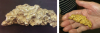 Gold nugget stolen from University of Arizona exhibit