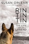 'Rin Tin Tin' a challenge for productive Orlean
