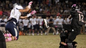 Ironwood Ridge 42, Mountain View 14