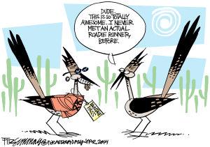 Last Laugh Bird brains