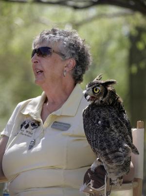 State suspends Tucsonan's wildlife rehab license