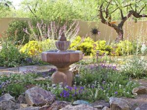 We will help you design a gorgeous landscape and really listen to your needs ~ Rothkopf Landscape Studio ~ A+ BBB rated and over 30 years of experience ~ (520) 686-6934
