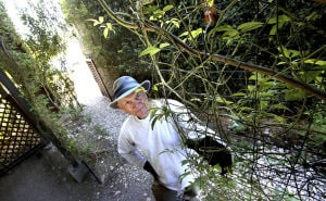 Tucson garden thrives from years of heartache