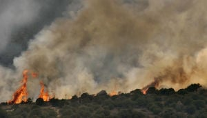 Photos: The Brins Fire in 2006