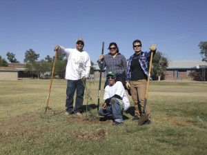Saving the planet - one tree at a time