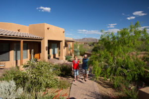 Xeriscape means dry, not dull
