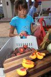 Santa Fe Square Farmers' Market