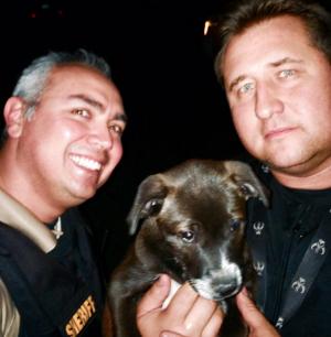 Sheriff's deputies recover stolen puppy
