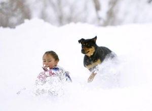 Photo of the day: Fun in the snow