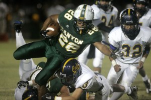 Canyon del Oro 36, Flowing Wells 15