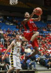 HS boys basketball preview: Sahuaro's Renfro leads way
