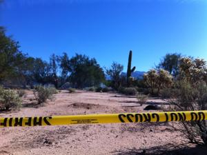 Fire reported at cactus nursery NW of Tucson