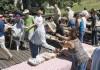Suds, song, sauerkraut continue for 2 weekends