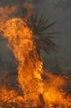Kent Springs Burn