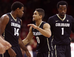 Wildcats insist focus is solely on Buffs