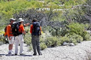 Canyon Ranch exec still missing after ground search