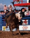 The Best of Arizona Rodeo champions