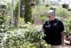Freeze gives gardeners a chance to redo yards