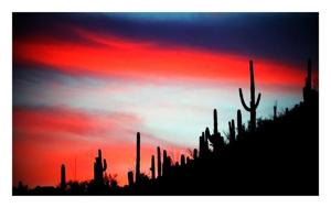 Star reader sunset photo contest entries