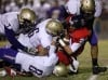 Sabino high school 31, Sahuaro 10