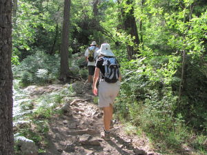 Classic hike in the Catalinas offers respite from the heat