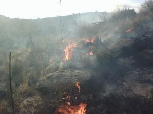 Containment of small wildfire in Rincons expected tonight