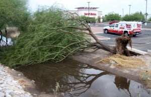 More storm photos: Damaged Tucson Mall open; some still without power