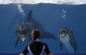 Photos: Fun at the aquarium