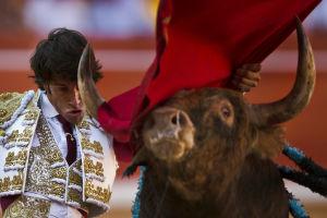 Photos: San Fermin festival in Pamplona, running of the bulls