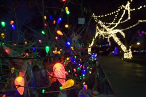 It's the last weekend to catch Zoo Lights