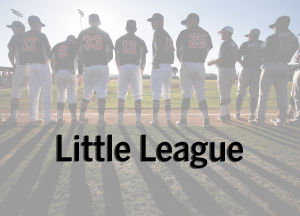 Christmas comes early for Nogales Little Leaguers