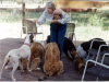 Tankersley Trust commits $1 million gift to the Humane Society of Southern Arizona