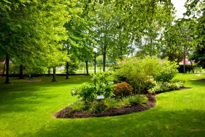 We'll actually show up when we say we will! ~ A and K Landscaping ~ The Real Deal ~ 520-254-9086