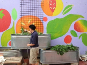 Gardening programs sprout at area schools