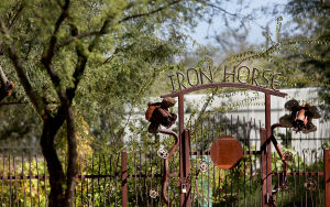 Iron Horse neighborhood pops with personality