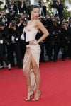 France Cannes The Homesman Red Carpet