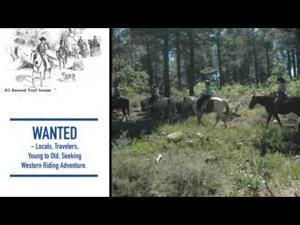 All Around Trail Horses, LLC.