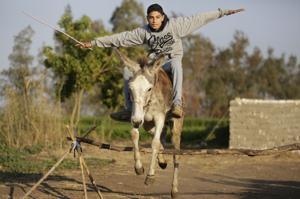 Photos: Leaping donkey turns heads
