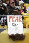 Bills Steelers Football