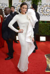 2014 Golden Globe Awards red carpet