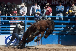 Rodeo: Lowe, Thouvenell raking in the wins