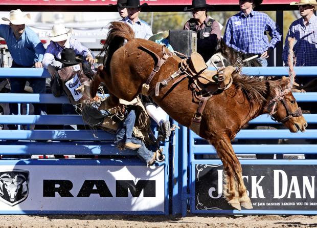 Photos: 2015 Tucson Rodeo