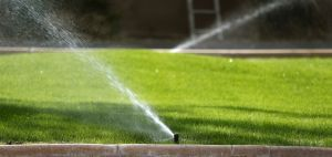 Tucson Country Club area uses most water